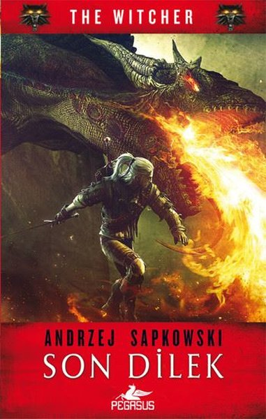 The Witcher 1: Son Dilek